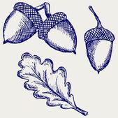 Acorn. Doodle style — Stock Photo