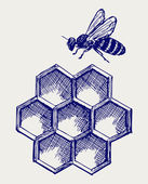 Working bee on honeycells — Stock Photo