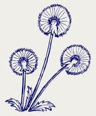 Blow Dandelion — Stock Vector
