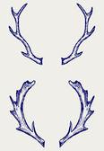 Deer horns — Stock Vector