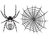 Spider and Web — Vecteur