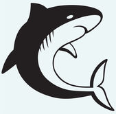Silhouette shark — Stock Vector