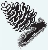 Pine strobile — Vector de stock