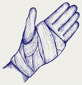 Hand tied elastic bandage — Stock Vector