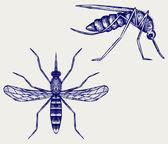 Mosquito — Stock Vector