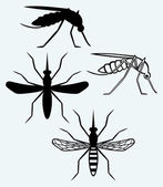 Silhouettes of mosquito — Stock Vector