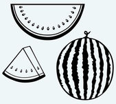 Plátky zralého melounu — Stock vektor