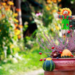 Stock Photo: Scarecrow and decorative pumpkins in ikebana