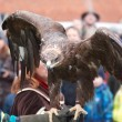 Eagle poised for flight on gauntlet — Stock fotografie #17470823