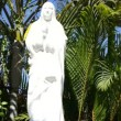Mother Mary — Stock Video #12010012