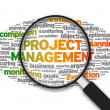 Project Management — Stock Photo #12350876