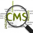 Content Management System — Stock Photo #12451210