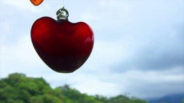 Skleněné srdce — Stock video