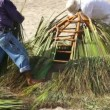 Palapa construction - Stock Photo