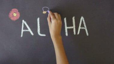 Aloha Hawaii Chalk Drawing — Stock Video