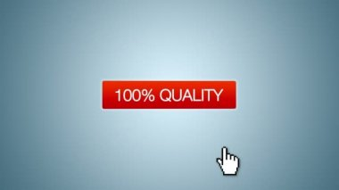 100 percent Quality, Service Competence Animation — Stock Video