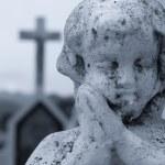 Praying Angel — Stock Photo #29625543