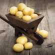 Potatos in a miniature wheelbarrow — Stock Photo
