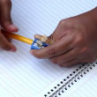 Person sharpens a pencil — Stock Video