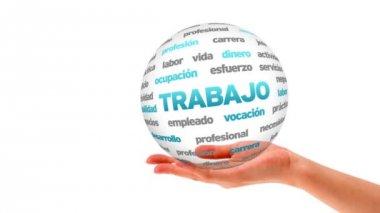 Work word sphere (In Spanish) — Stock Video