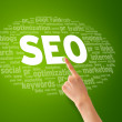 Search Engine Optimization — Stock Photo #9649607