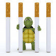 Tortoise escaping cigarette prison — Stock Photo