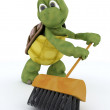 Tortoise sweeping with a brush — Stock Photo