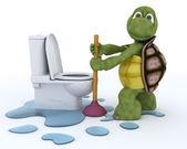 Contratante do encanamento de tartaruga — Fotografia Stock