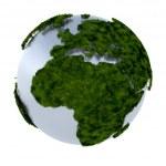 Terre verte — Photo