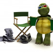 Tortoise with a directors chair — Stock Photo