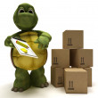 Tortoise delivering a parcel — Stock Photo