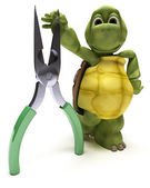 Tortoise with pliers — Stock Photo
