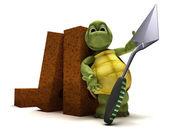 Tartaruga com tijolos e cimento trowl — Foto Stock