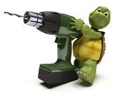 Tartaruga com furadeira — Foto Stock