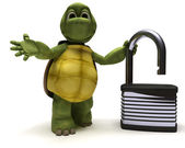 Tortoise with padlock — Stock Photo