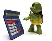Tortoise with a calculator — Stock Photo