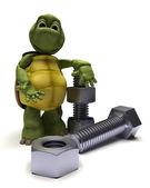 Tartaruga con un dado e bullone — Foto Stock