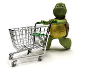 Tortoise with a shopping cart — Stock Photo