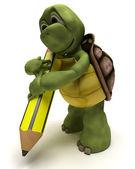 Schildkröte hält einen stift — Stockfoto