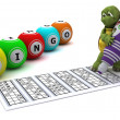 Tortoise playing bingo — Stock Photo