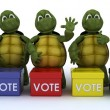 Stock Photo: Tortoises canvasing for votes in election