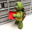 Stock Photo: Tortoise filing documents