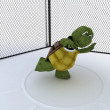 Stock Photo: Tortoise competing in discus