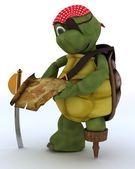 Tortoise dressed as a pirate — Stock Photo