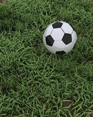 Soccer ball on grass pitch — Stockfoto