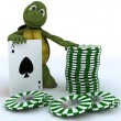 Tortoise with casino cards and chips — Stock Photo