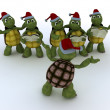 Tortoises singing christmas carols — Stock Photo