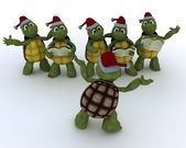 Tortoises singing christmas carols — Foto de Stock
