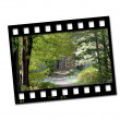 Stock Photo: Countryside filmstrip