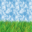 Grass and sky — Stock Photo #38398375